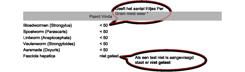 uitslag nl